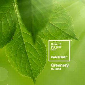 usare il greenery a casa
