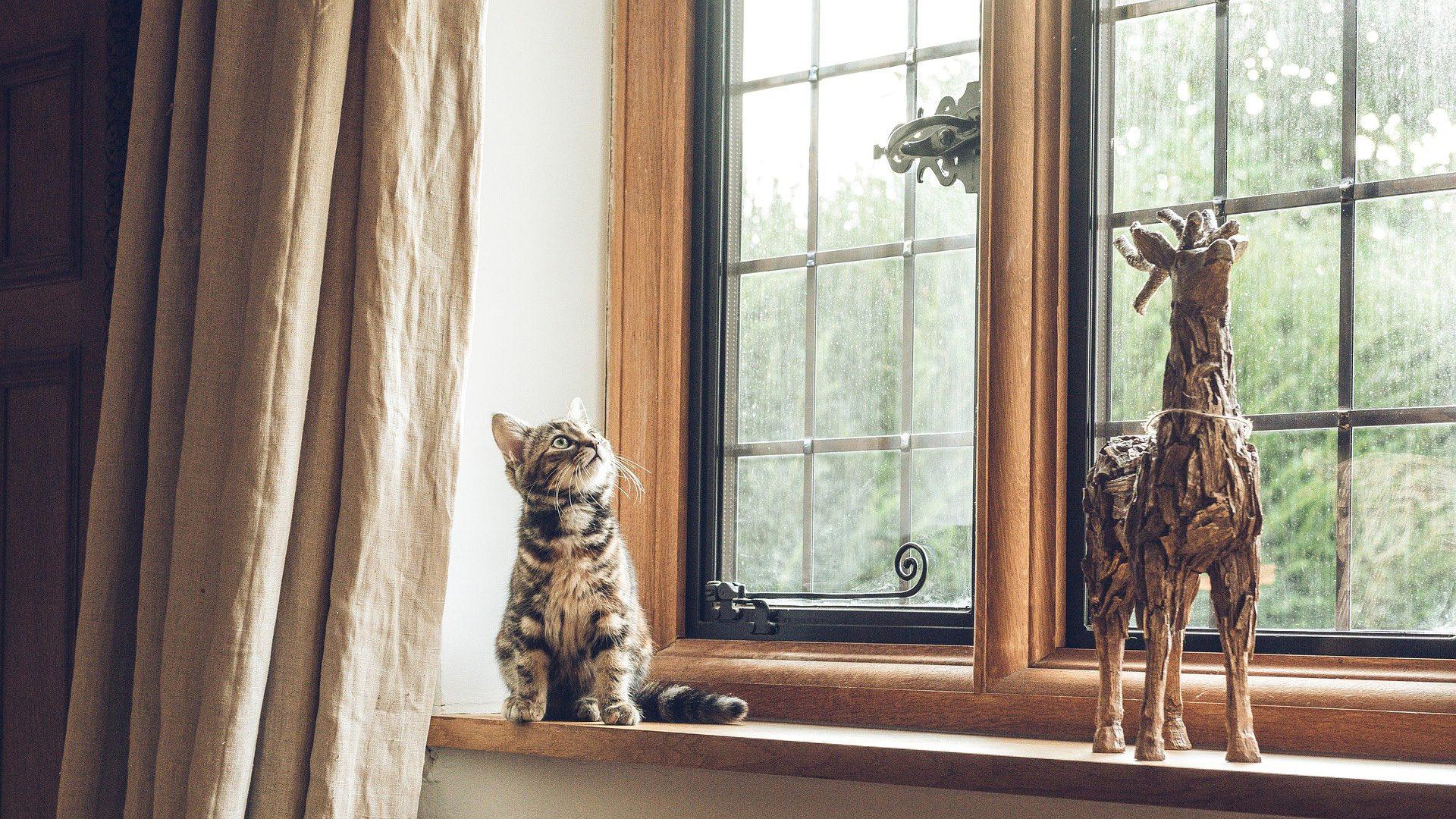 3 vantaggi delle finestre in legno alluminio