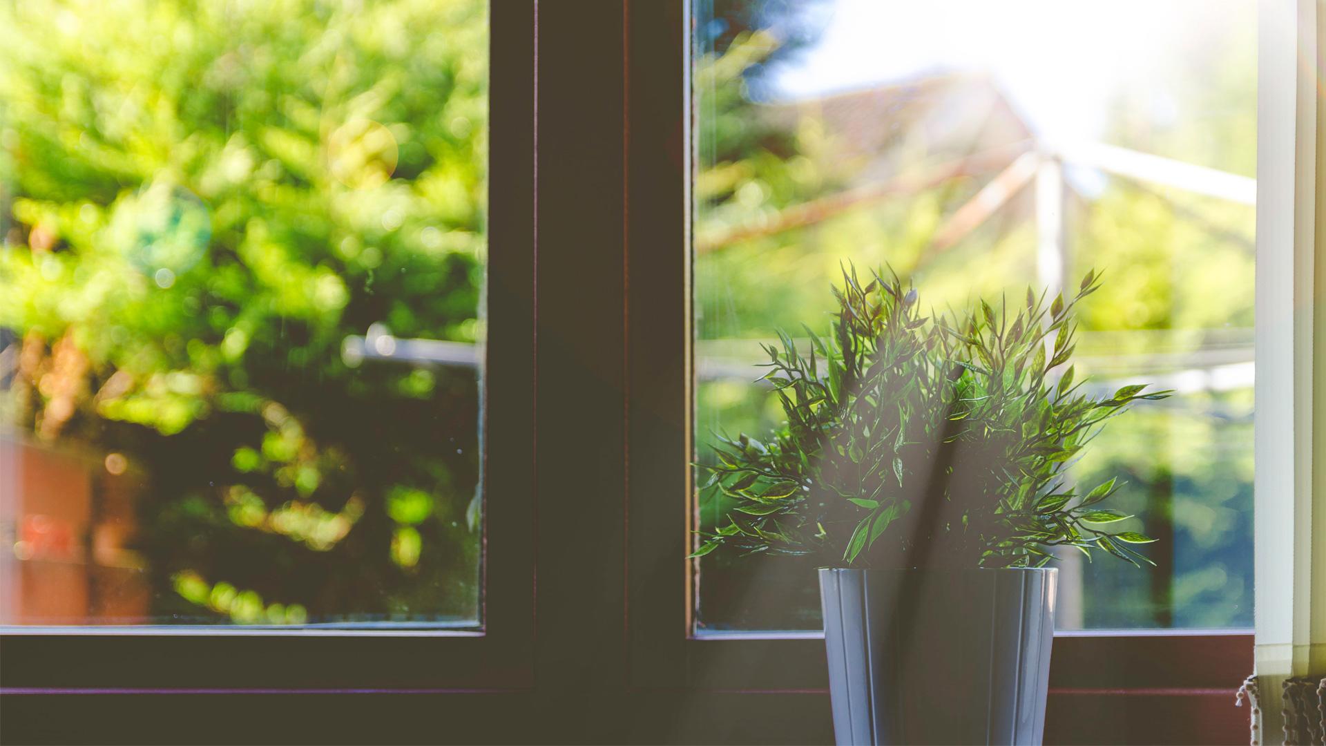 Muffa Vicino Agli Infissi quando cambiare guarnizioni delle finestre | spazio 4 serramenti